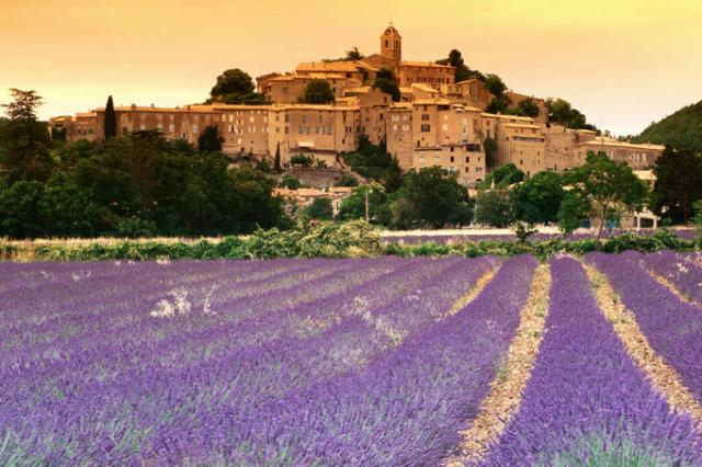 The lavender fields of Provence smell as beautiful as they look!