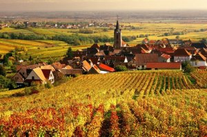 Burgundy boasts of vineyards as far as the eye can see--many consider this the best wine region of France!